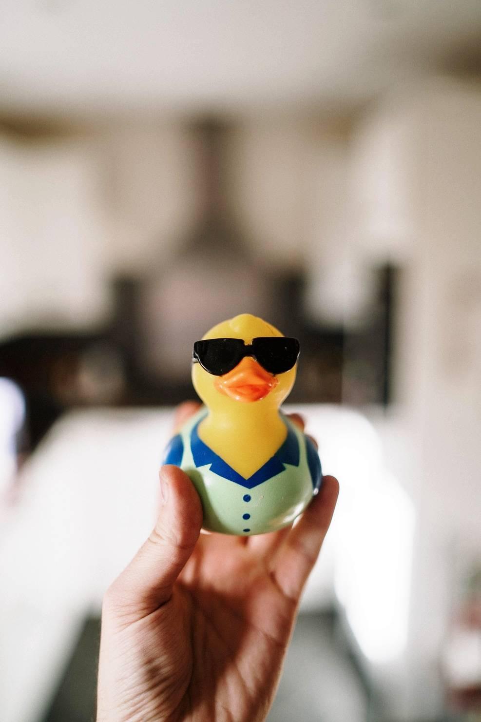 rubber-duck
